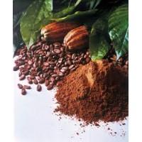 Какао и кэроб